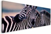 REINDERS Zebras - Schilderij - 150x57cm
