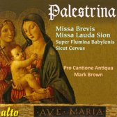 Missa Brevis & Missa Lauda Sion