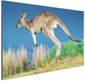 Springende kangoeroe Aluminium 90x60 cm - Foto print op Aluminium (metaal wanddecoratie)