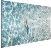 Haai in ondiep water Aluminium 180x120 - XXL cm - Foto print op Aluminium (metaal wanddecoratie)