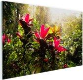 FotoCadeau.nl - Prachtige bloemen middenin de jungle Glas 90x60 cm - Foto print op Glas (Plexiglas wanddecoratie)