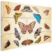 Botanische print vlinders Hout 120x80 cm - Foto print op Hout (Wanddecoratie)