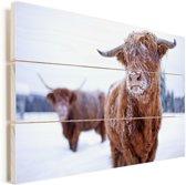 Twee Schotse hooglanders in de sneeuw Vurenhout met planken 90x60 cm - Foto print op Hout (Wanddecoratie)