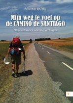 Mijn weg te voet op de Camino de Santiago