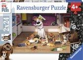 Ravensburger Secret Life of Pets Onaantastbaar Twee puzzels van 24 stukjes