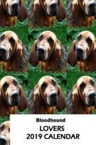 Bloodhound Lovers 2019 Calendar