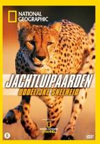 National Geographic - Jachtluipaarden