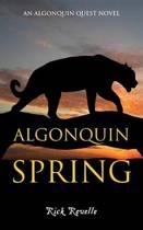 Algonquin Spring