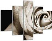 Glas schilderij Roos, Bloem | Sepia, Bruin, Zwart | 100x70cm 5Luik | Foto print op Glas |  F006667