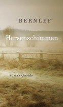 Boekomslag van 'Hersenschimmen'