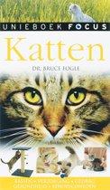 Focus / Katten