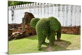 Buxusstruik als een olifant Aluminium 90x60 cm - Foto print op Aluminium (metaal wanddecoratie)