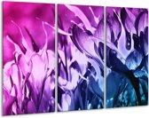 Glasschilderij Bloem | Paars, Blauw | 120x80cm 3Luik | Foto print op Glas |  F003525