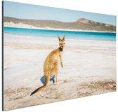 Omkijkende kangoeroe Aluminium 90x60 cm - Foto print op Aluminium (metaal wanddecoratie)