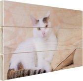 Prachtige kat Hout 30x20 cm - Foto print op Hout (Wanddecoratie)