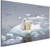 Polarberen op het pakijs Aluminium 120x80 cm - Foto print op Aluminium (metaal wanddecoratie)