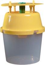 D-Date voor Buxusmot / Buxusrups - Complete set met 4 feromooncapsules en funnelval - feromonen / feromoonval tegen buxusmot