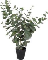Viv! Home Luxuries Eucalyptus plant - zijden plant - groen - topkwaliteit