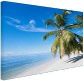 Palmbomenfoto strand Canvas 60x40 cm - Foto print op Canvas schilderij (Wanddecoratie)