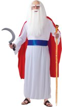 Dorpsdruïde kostuum voor volwassenen - inclusief pruik/baard