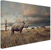 Afrikaanse dieren op de savanne Canvas 80x60 cm - Foto print op Canvas schilderij (Wanddecoratie woonkamer / slaapkamer)