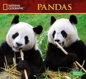 National Geographic Pandas 2018 Wall Calendar