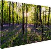 FotoCadeau.nl - Paarse bloemen in het bos Canvas 120x80 cm - Foto print op Canvas schilderij (Wanddecoratie)