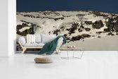 Fotobehang vinyl - Panorama van sneeuwrotsen in het Schotse Nationaal park Cairngorms breedte 520 cm x hoogte 260 cm - Foto print op behang (in 7 formaten beschikbaar)