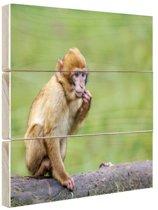 FotoCadeau.nl - Jonge makaak aap Hout 120x80 cm - Foto print op Hout (Wanddecoratie)