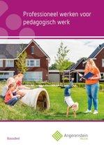 Professioneel werken voor pedagogisch werk