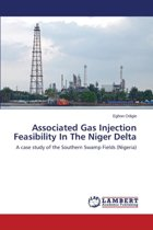 Associated Gas Injection Feasibility in the Niger Delta