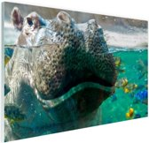 Nijlpaard Close-up met vissen Glas 30x20 cm - klein - Foto print op Glas (Plexiglas wanddecoratie)