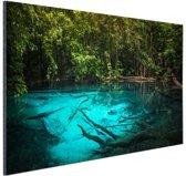 Helderblauw meer in de jungle Aluminium 60x40 cm - Foto print op Aluminium (metaal wanddecoratie)