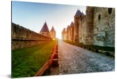 Kathedraal Saint Michel in het Franse Carcassonne Aluminium 90x60 cm - Foto print op Aluminium (metaal wanddecoratie)