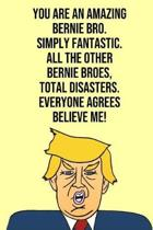 You Are An Amazing Bernie Bro Simply Fantastic All the Other Bernie Broes Total Disasters Everyone Agree Believe Me
