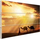Arabische man en kamelen zonsondergang Hout 160x120 cm - Foto print op Hout (Wanddecoratie) XXL / Groot formaat!