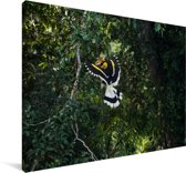 Sierlijke dubbelhoornige neushoornvogel in de groene natuur Canvas 120x80 cm - Foto print op Canvas schilderij (Wanddecoratie woonkamer / slaapkamer)