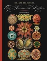 Ernst Haeckel Art Forms in Nature Coloring Book Cbk003