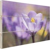 Bloeiende paarse bloem Hout 160x120 cm - Foto print op Hout (Wanddecoratie) XXL / Groot formaat!