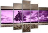 Glasschilderij Boom | Paars, Grijs | 170x100cm 5Luik | Foto print op Glas |  F004455