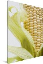 Maïskolf met lichtgroene bladeren Canvas 60x90 cm - Foto print op Canvas schilderij (Wanddecoratie woonkamer / slaapkamer)