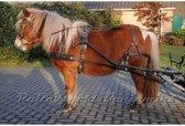 RBC enkelspan tuig, Pony
