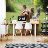 Fotobehang Dog | V4 - 254cm x 184cm | 130gr/m2 Vlies