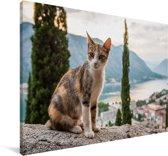 Kat op het muurtje met overzicht over de Baai van Kotor in Montenegro Canvas 60x40 cm - Foto print op Canvas schilderij (Wanddecoratie woonkamer / slaapkamer)