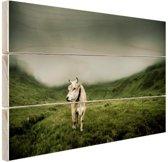 Koe in berggebied Hout 60x40 cm - Foto print op Hout (Wanddecoratie)