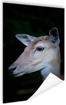 Hert close-up Poster 120x180 cm - Foto print op Poster (wanddecoratie woonkamer / slaapkamer) / Dieren Poster XXL / Groot formaat!