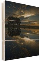 Reflectie van bomen in rustig water in het Nationaal park Doñana Vurenhout met planken 120x160 cm - Foto print op Hout (Wanddecoratie) XXL / Groot formaat!