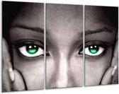 Canvas schilderij Ogen | Groen, Zwart, Grijs | 120x80cm 3Luik