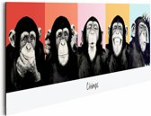 Reinders Schilderij The Chimp - compilation - Deco Panel - 90 x 30 cm - no. 22360