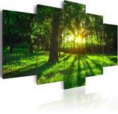 Schilderij Ochtend in het Bos, groen, 5luik, 2 maten